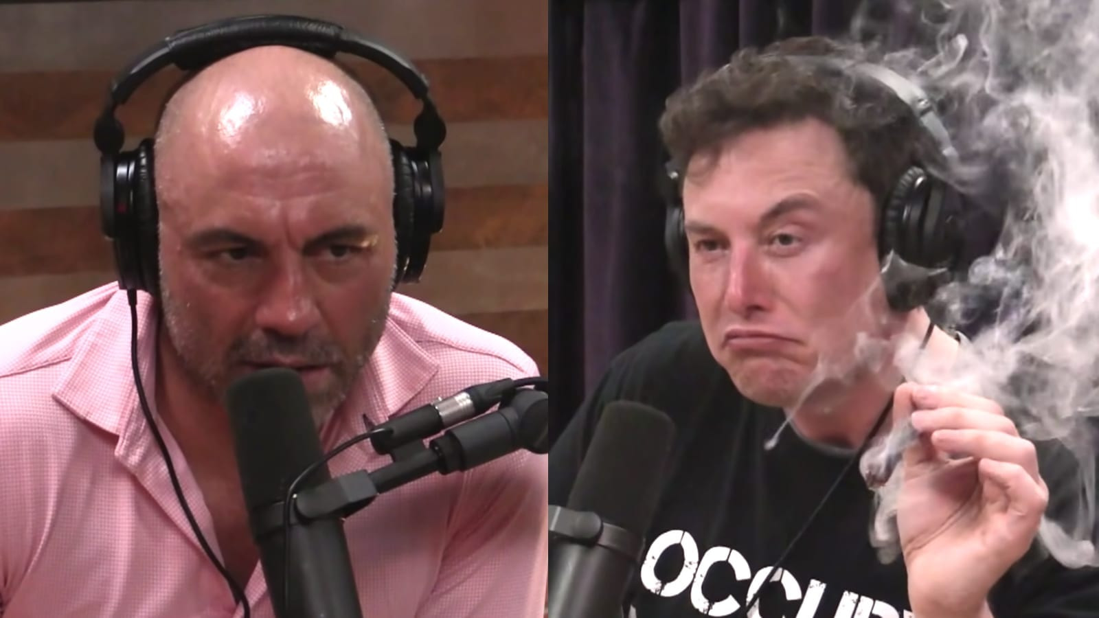 Elon Musk Thinks CBD Is 'Fake,' But Joe Rogan Teaches Him A Lesson