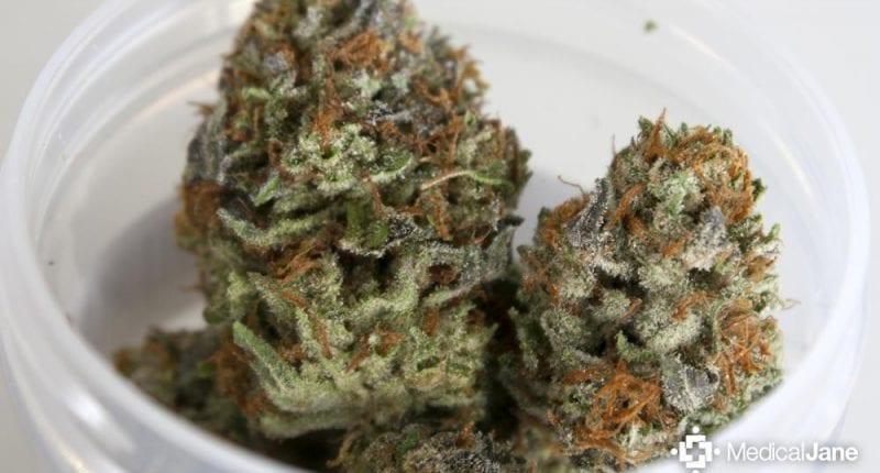 LA Confidential Cannabis Strain