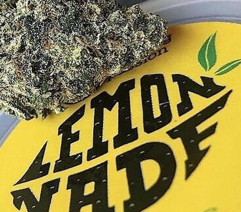 Lemonnade