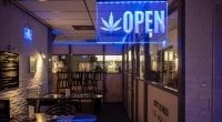 Marijuana Companies With Provisional Licenses Have Right to Appeal Regulation Enforcement