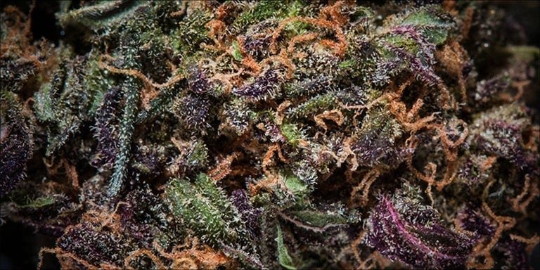 Loud Weed: What Does It Mean?